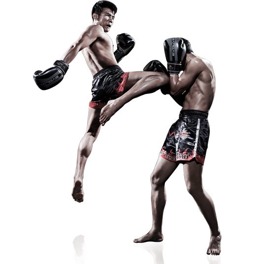Why Muay Thai Course In Thailand Are Getting So Popular?