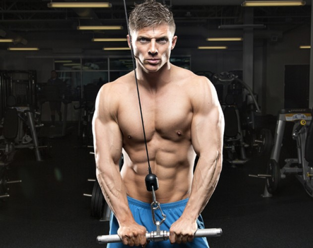 The Best Option For A Fat-Free Physique