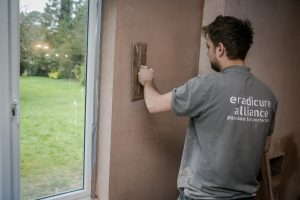 London Damp Proofing