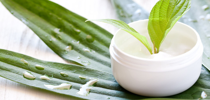 Retain The Beauty Of The Skin by Using The Natural Skin Care Products