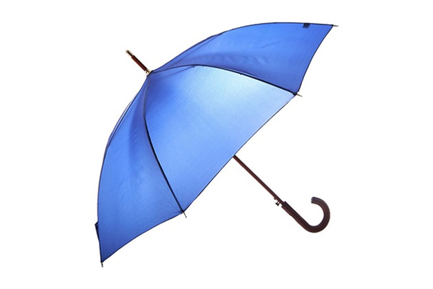 Powerful Guide For Making Your Purchase Of Umbrella
