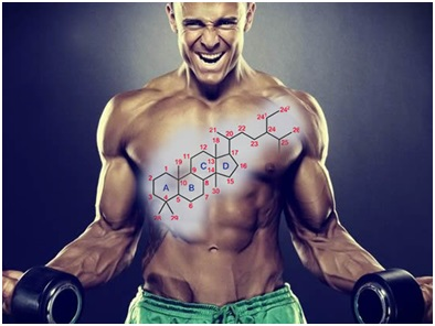 Get Best Suitable Steroid To Enhance Your Body Power and Stamina