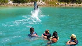 Plan Your Trip To Bahamas Capital City