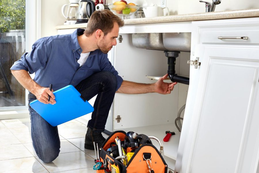 Basics Everyone Should Know About Plumbing Inspections