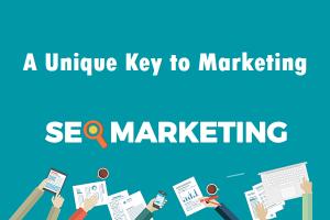 professional seo services, seo marketing, unique key to marketing