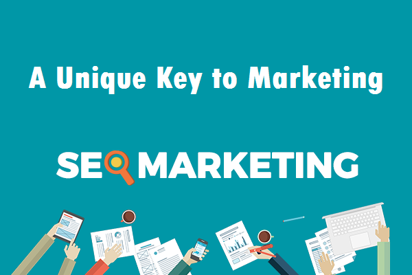 professional seo services, seo marketing, unique key to marketing