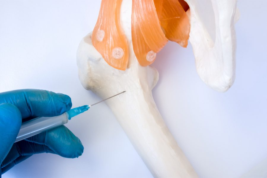 Why Is The Bone Marrow Such An Important Part Of Our Body?
