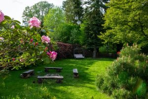 Coolest Ideas For Renovating Your Backyard